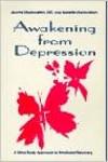 """עטיפת הספר """"התעוררות מדיכאון"""" מאת ג'רום וננט מרמורשטיין."""