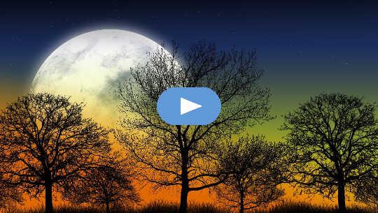 Horoskopvecka: 26 april - 2 maj 2021 (video)