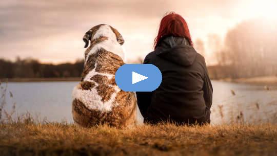 La primera regla para el éxito de la meditación: no te dejes gobernar por lo que hacen los demás (video)