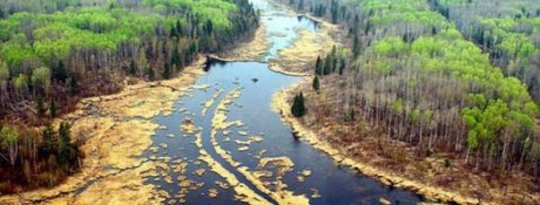 Alberta Oil Leak Into Week 10 - Can It Be Stopped?