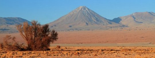 Desert Yields Clues To Species Survival