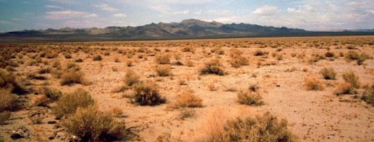 How To Green the Deserts & Reverse Climate Change