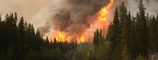 अलास्का के जंगल की आग अधिक तीव्रता से जलाएं