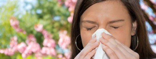 How to Control Your Seasonal Allergies
