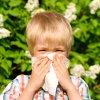Hvordan unngå allergier i barnet ditt