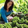 Создание качественного компоста: убедитесь, что ваш сад питателен