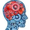 'N Verstand is 'n verskriklike ding om te mors: Vyf praktyke vir groter geestesgesondheid