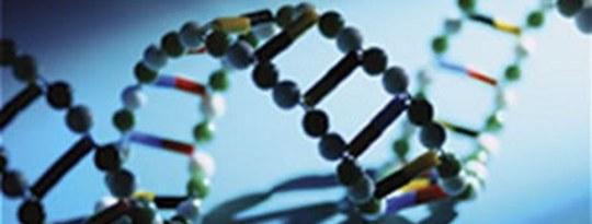चेतना: विज्ञान और आत्मा के बीच पुल