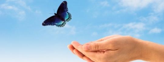 Control o Joy: ¿Cuál va a elegir a la experiencia? por Alan Watts.