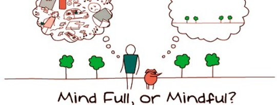 Pursuit of Wisdom Through Mindfulness