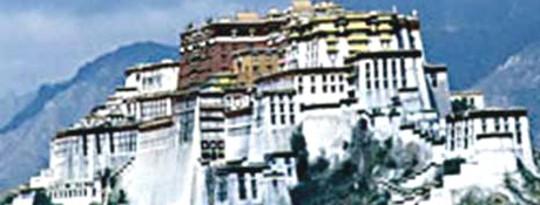 Le prochain Dalaï Lama pourrait être une femme?