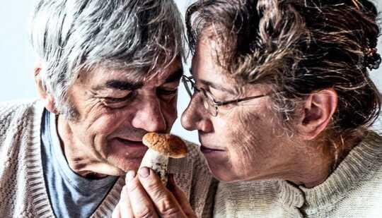 Et eldre par lukter en sopp sammen