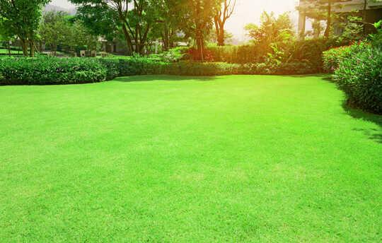 Kirkkaan vihreä nurmikko