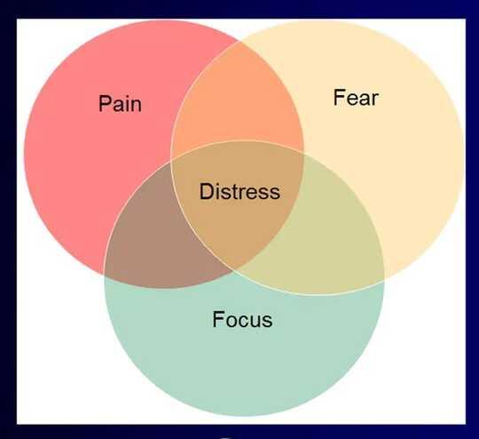 El diagrama de Venn que muestra la intersección del dolor, el miedo y el enfoque es la angustia
