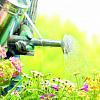 Hvorfor havearbejde er godt for dit sind såvel som din krop