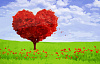 red tree shaped in a heart form in a field of green with red flowers in the forefront