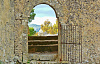 An open gate in a stone wall, opening up to a beautiful nature scene.