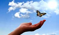 papillon au-dessus d'une main ouverte et ciel ouvert