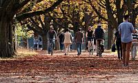люди, що йдуть і їздять на велосипеді через парк