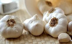 L'aglio può offrire protezione alle cellule cerebrali contro l'invecchiamento e la malattia?