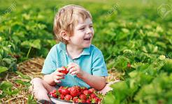 Vitamin D Dihubungkan Untuk Kurangkan Lemak Badan Dalam Kanak-kanak