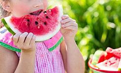 Fütterung uns und unsere Kinder: ökologische Auswirkungen von Bio-Lebensmitteln