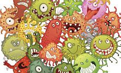 Estudios adicionales sobre las bacterias intestinales y la salud