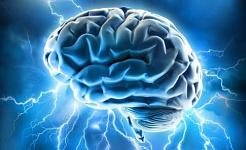 Dein Gehirn ist deine geheime Waffe
