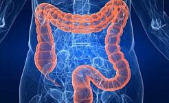 Kunnen de schroefachtige darmbacteriën uw diabetesrisico verhogen?