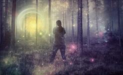 נערכו מחקרים מוגבלים על האופן שבו LSD מייצר את ההשפעות הפסיכו-אקטיביות שלו. פיקסביה