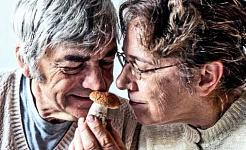 זוג מבוגר מריח יחד פטרייה