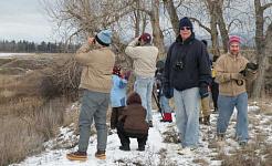 از آنجا که 1900، انجمن Audubon از تعداد کریسمس پرندگان کریسمس خود که از داوطلبان آماتور در سراسر کشور حمایت می کند حمایت می کند. USFWS کوه Prairie، CC BY