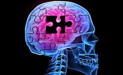 Як хвороба Альцгеймера повільно видає свої секрети