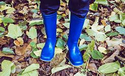 kuva lapsen jaloista yllään sinisiä kumisaappaita lehdet maassa