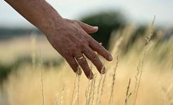 طرق تقليل التوتر: أطراف الأصابع تهدئ العقل
