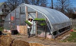 शहरी खेती फलफूल रहा है, लेकिन यह वास्तव में क्या उपज है?