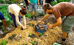 Tillbaka till Garden: Strö, kompost, och mer kompost