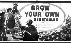 第二次世界大戦を復活させる時は「自分自身を成長させる」キャンペーンですか?