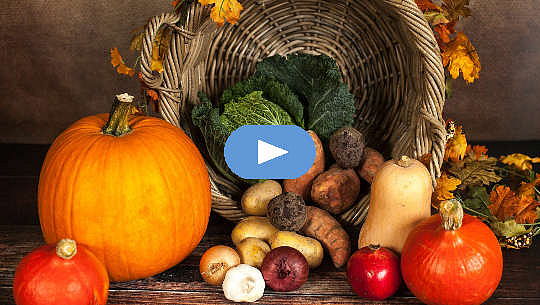 A Season for Everything: The Way Our Ancestors Ate (Video)