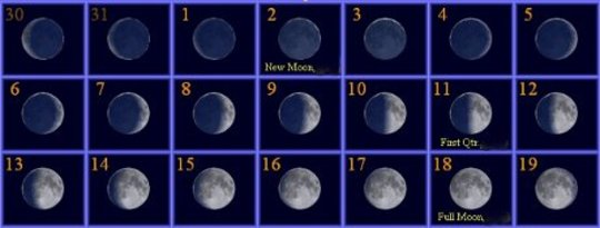 Die siklusse van die maan