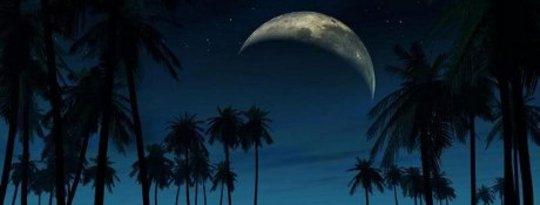 hành vi mặt trăng